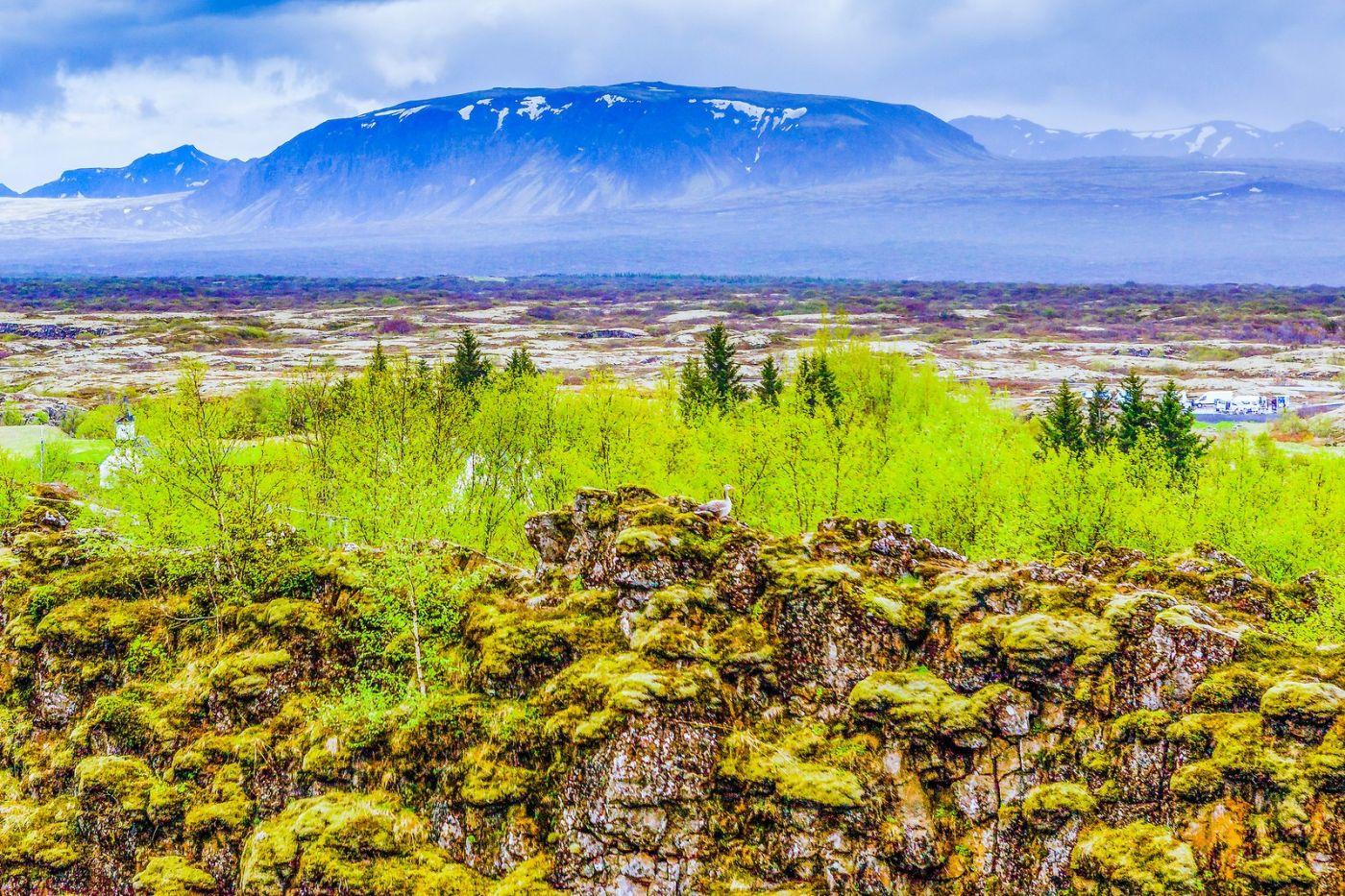 冰岛辛格韦德利国家公园,世界遗产_图1-31