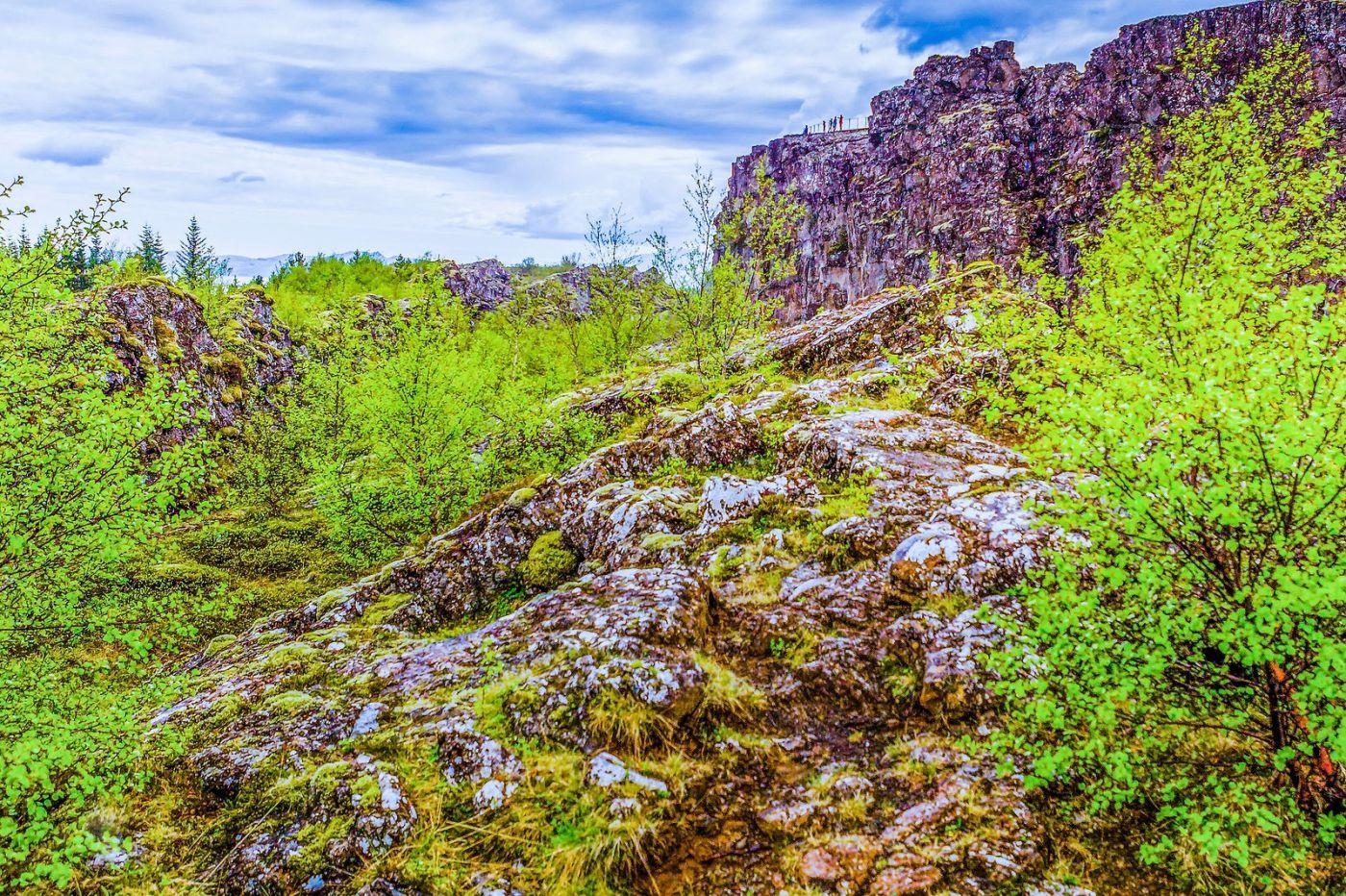 冰岛辛格韦德利国家公园,世界遗产_图1-26