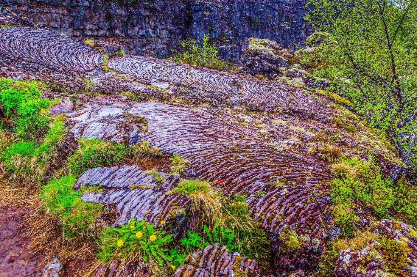 冰岛辛格韦德利国家公园,世界遗产_图1-21