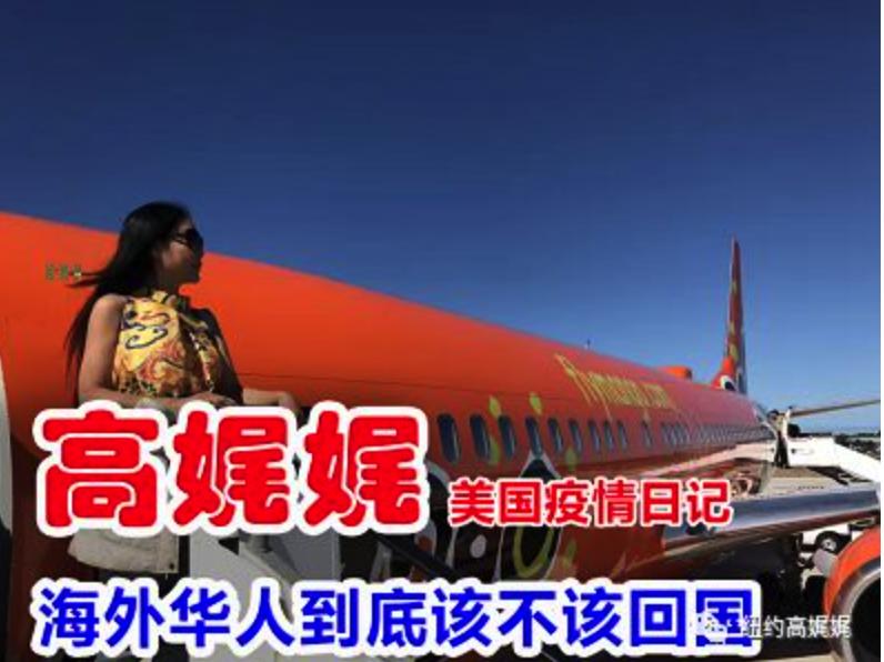 高娓娓美国疫情日记:海外华人到底该不该回国_图1-7