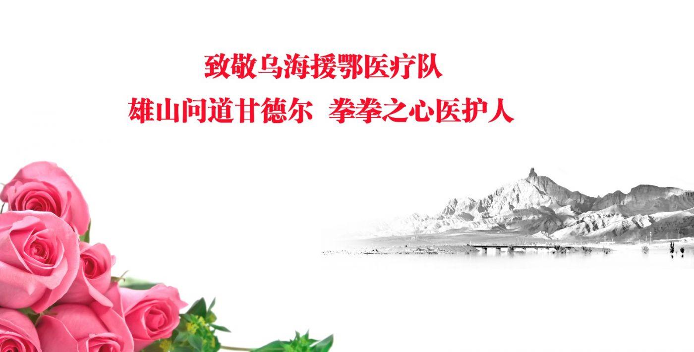 范建春书法作品赠送内蒙古乌海援鄂医疗队全体队员_图1-1