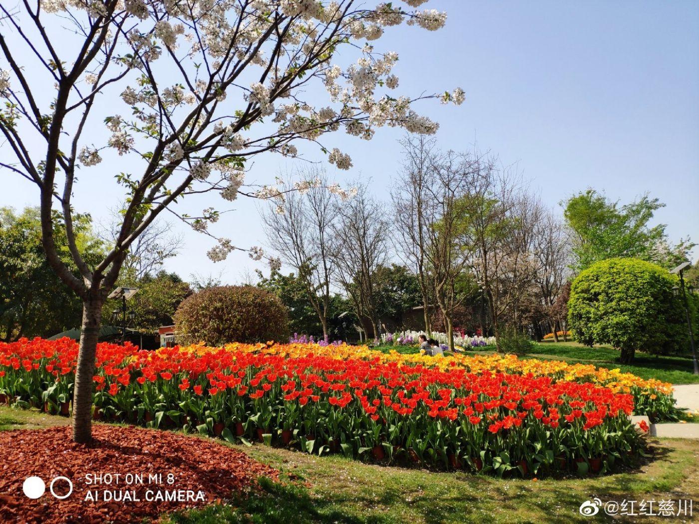 春天_图1-4
