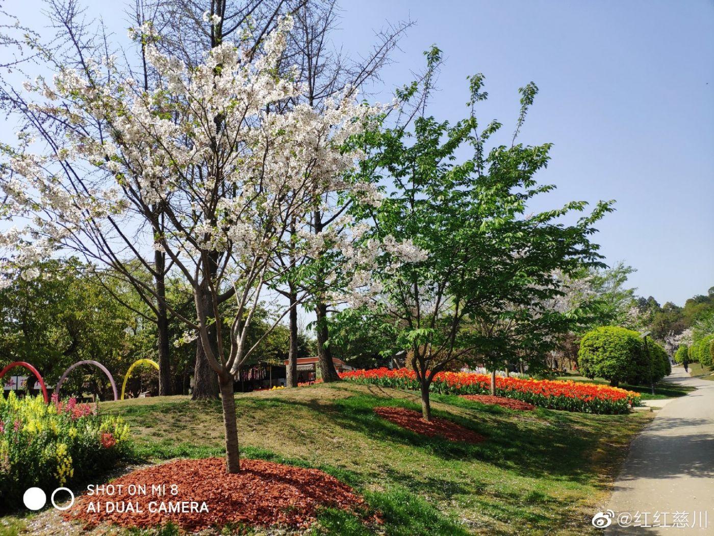 春天_图1-5