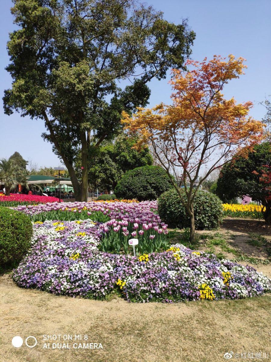 春天_图1-13