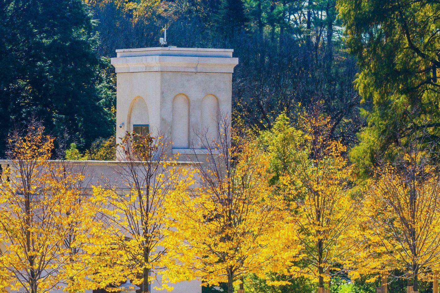 宾州长木公园,熟悉的景色_图1-40