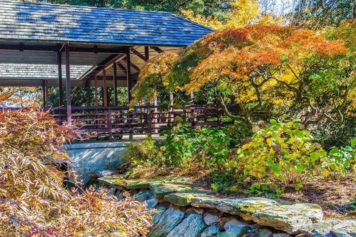 宾州长木公园,熟悉的景色_图1-32