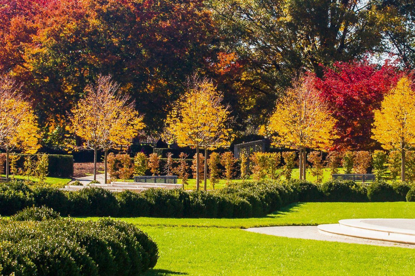 宾州长木公园,熟悉的景色_图1-31