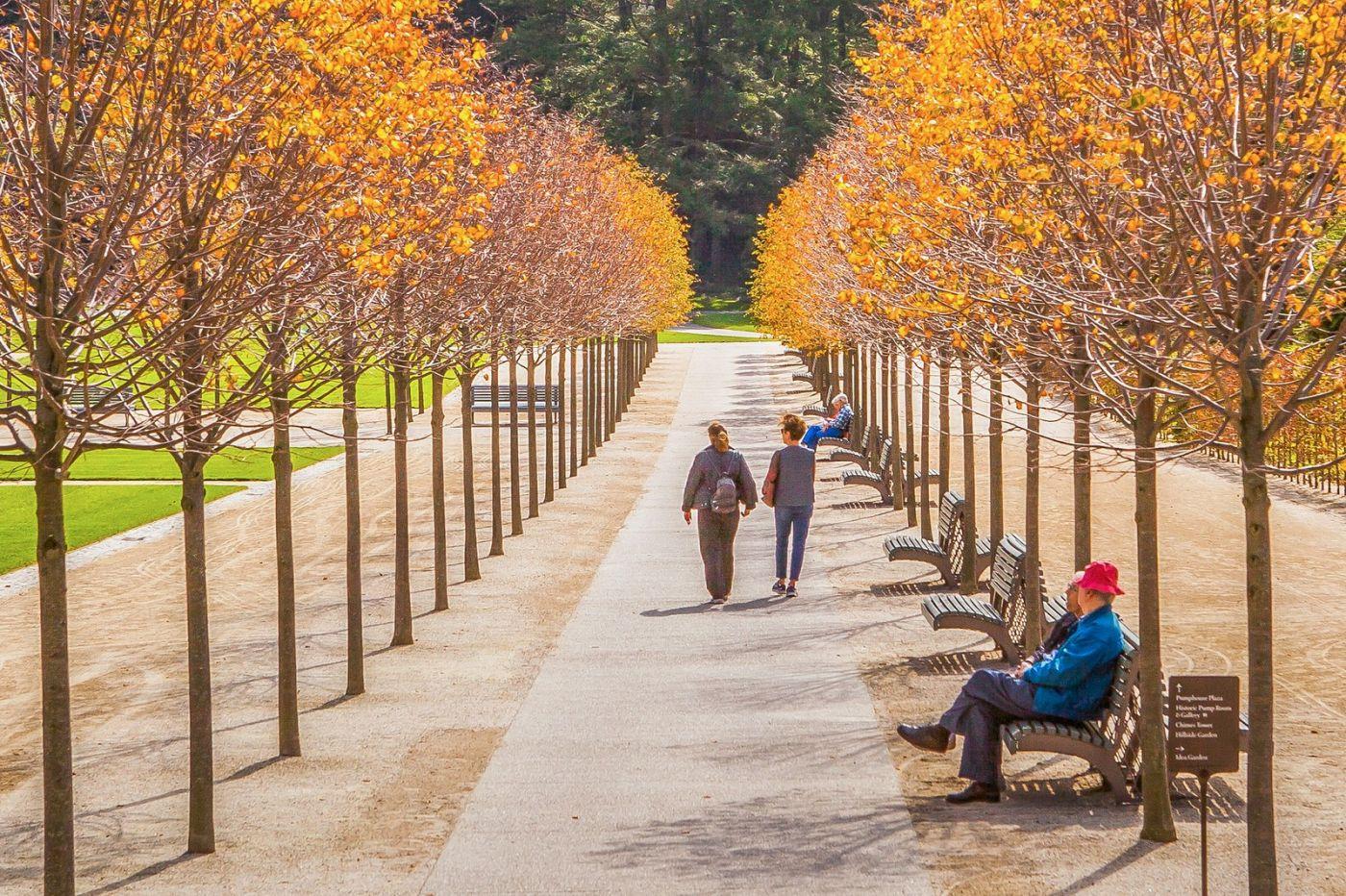 宾州长木公园,熟悉的景色_图1-29