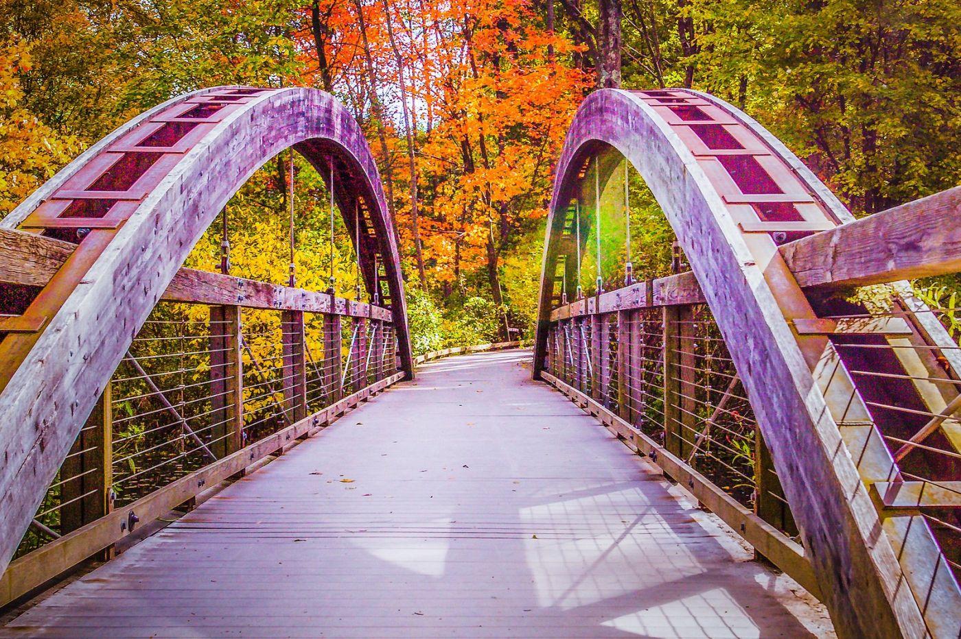 宾州长木公园,熟悉的景色_图1-26