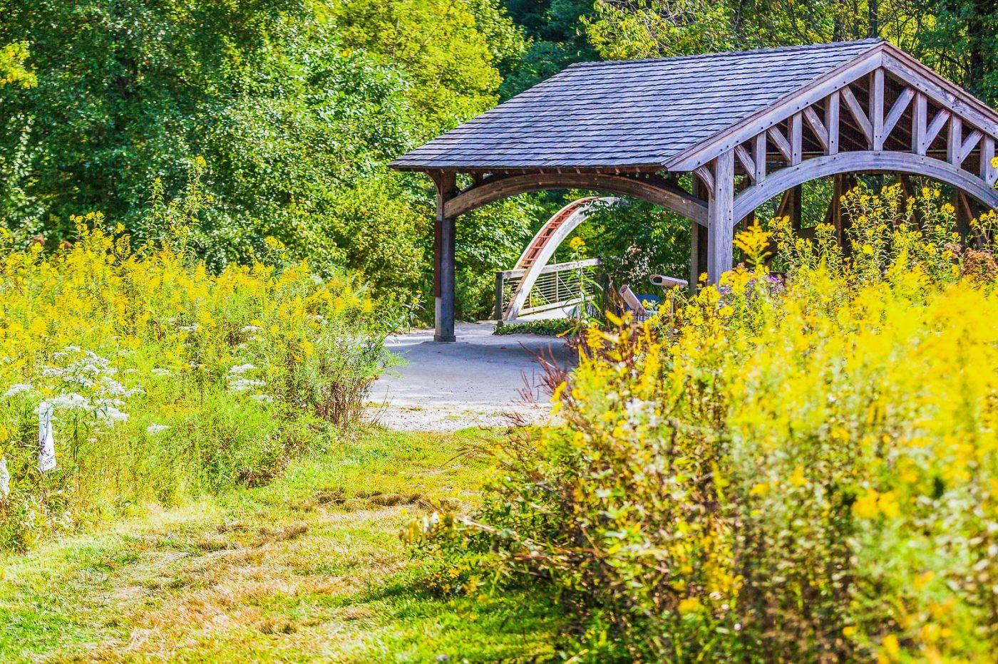 宾州长木公园,熟悉的景色_图1-24