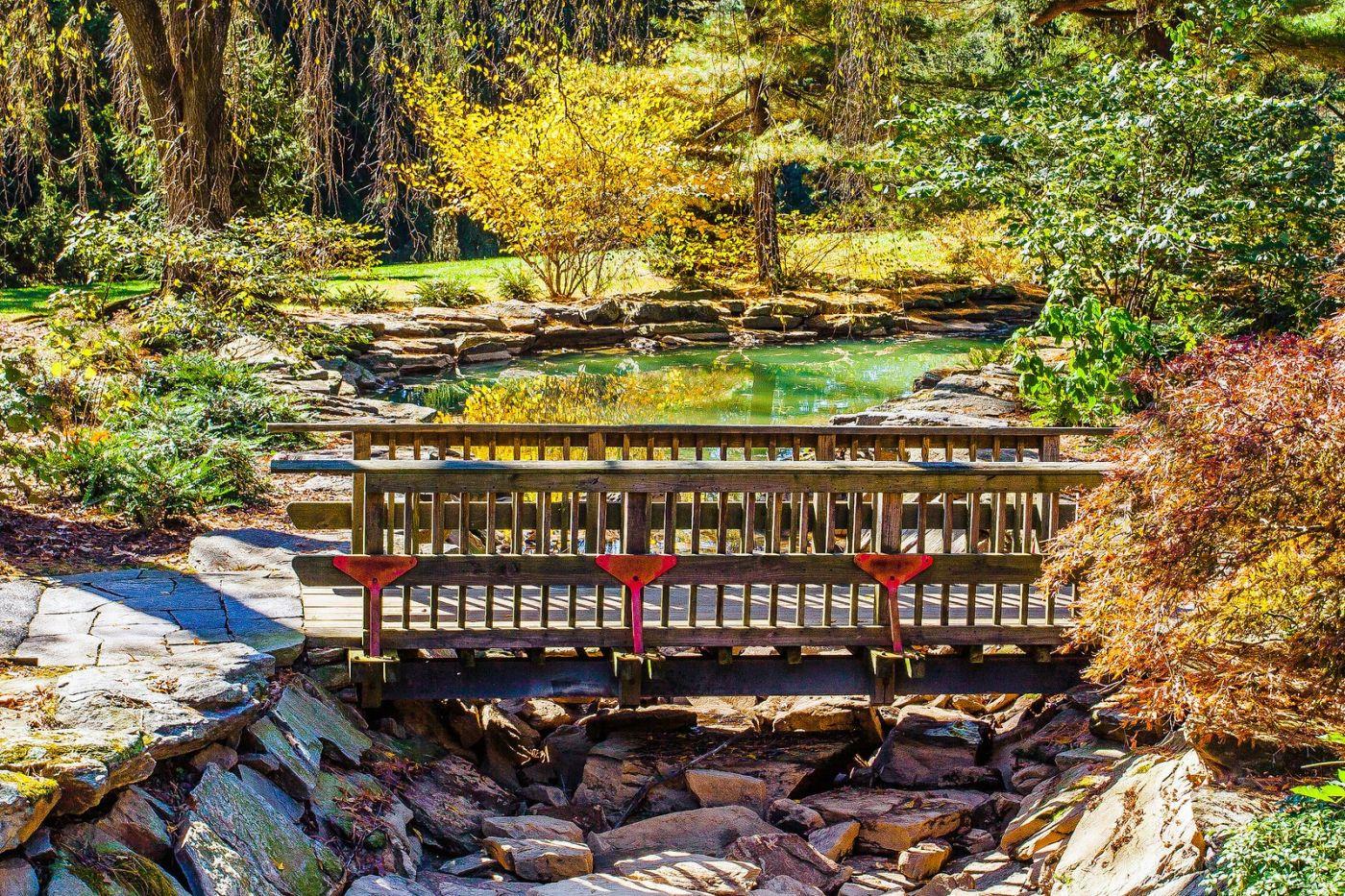 宾州长木公园,熟悉的景色_图1-20