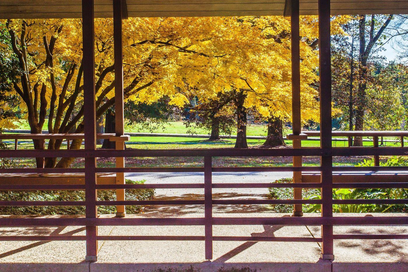 宾州长木公园,熟悉的景色_图1-9
