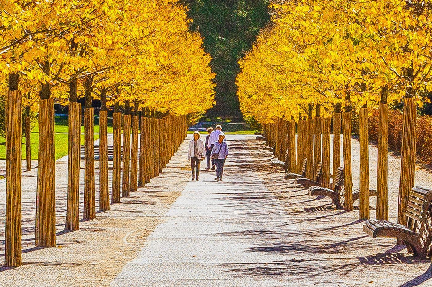 宾州长木公园,熟悉的景色_图1-14