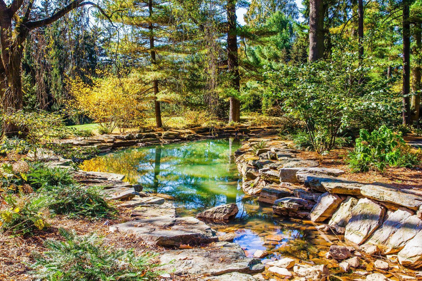 宾州长木公园,熟悉的景色_图1-10