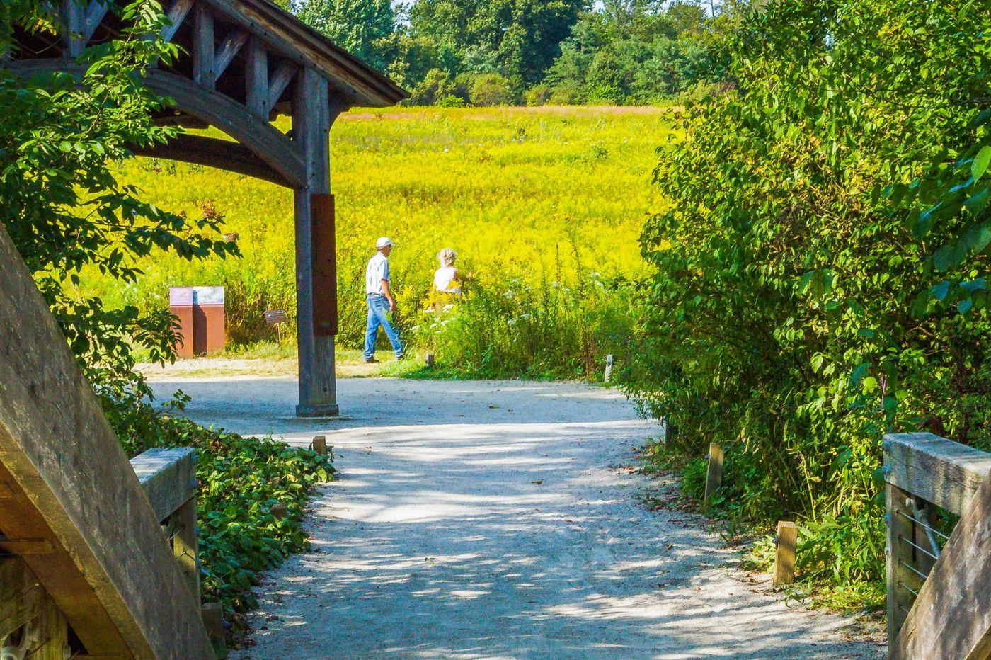 宾州长木公园,熟悉的景色_图1-7