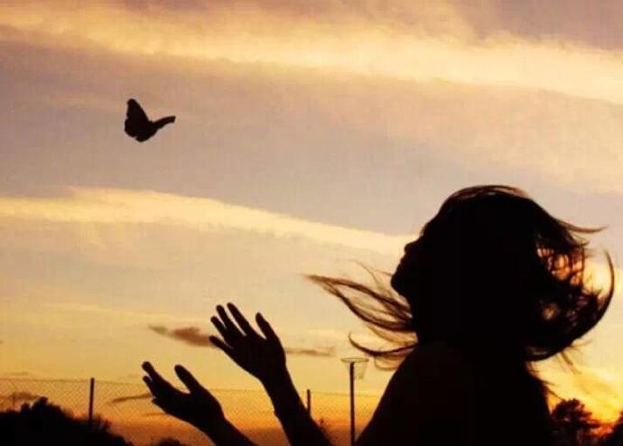 逆风方向,更适合飞翔;我不怕千万人阻挡,只怕自己投降_图1-1