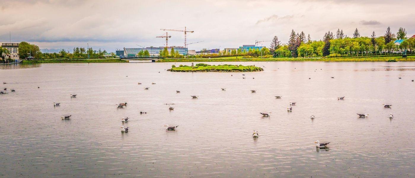 冰岛雷克雅未克(Reykjavík),城中湖_图1-17