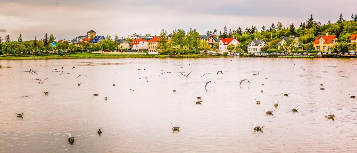 冰岛雷克雅未克(Reykjavík),城中湖_图1-12