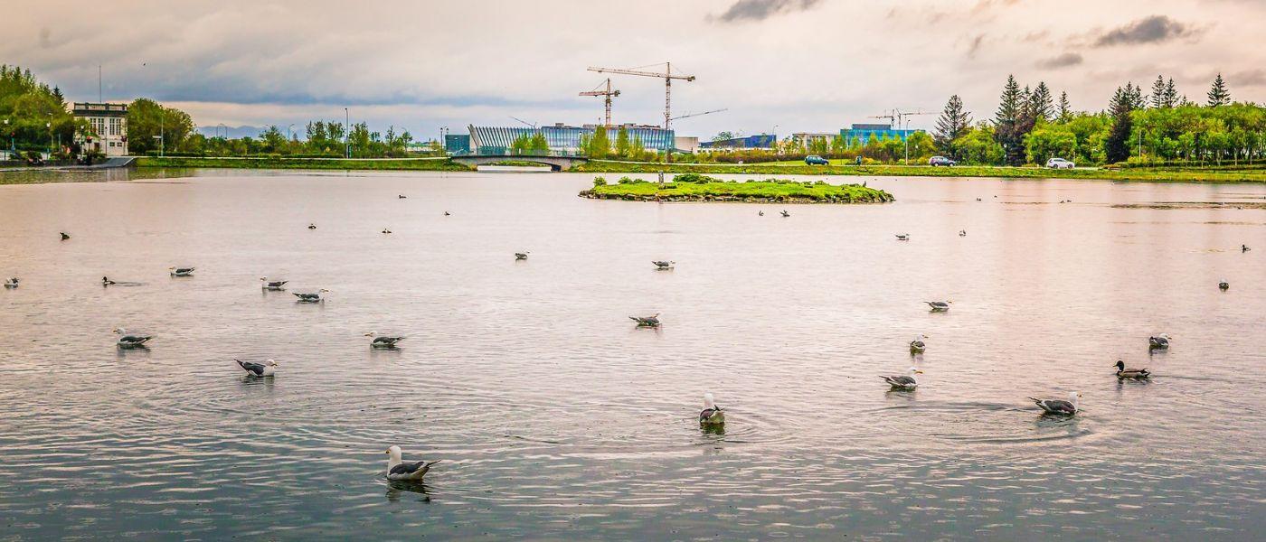 冰岛雷克雅未克(Reykjavík),城中湖_图1-15
