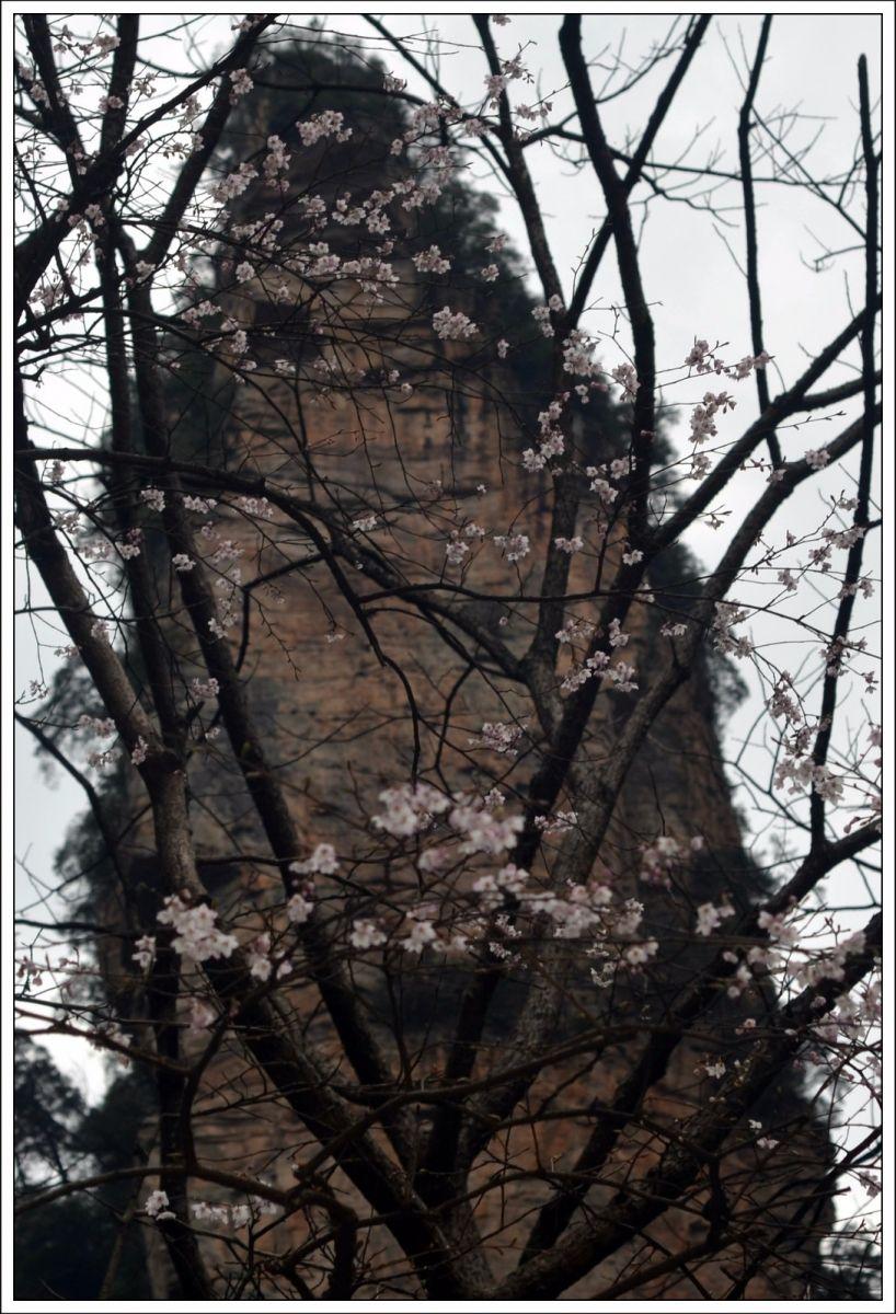 武陵源春赋【古典诗词】_图1-11
