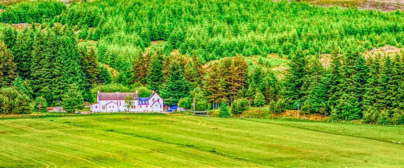 苏格兰美景,田园风情_图1-33