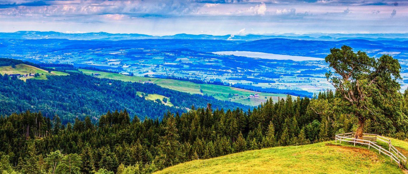 瑞士卢塞恩(Lucerne),山上山下_图1-24