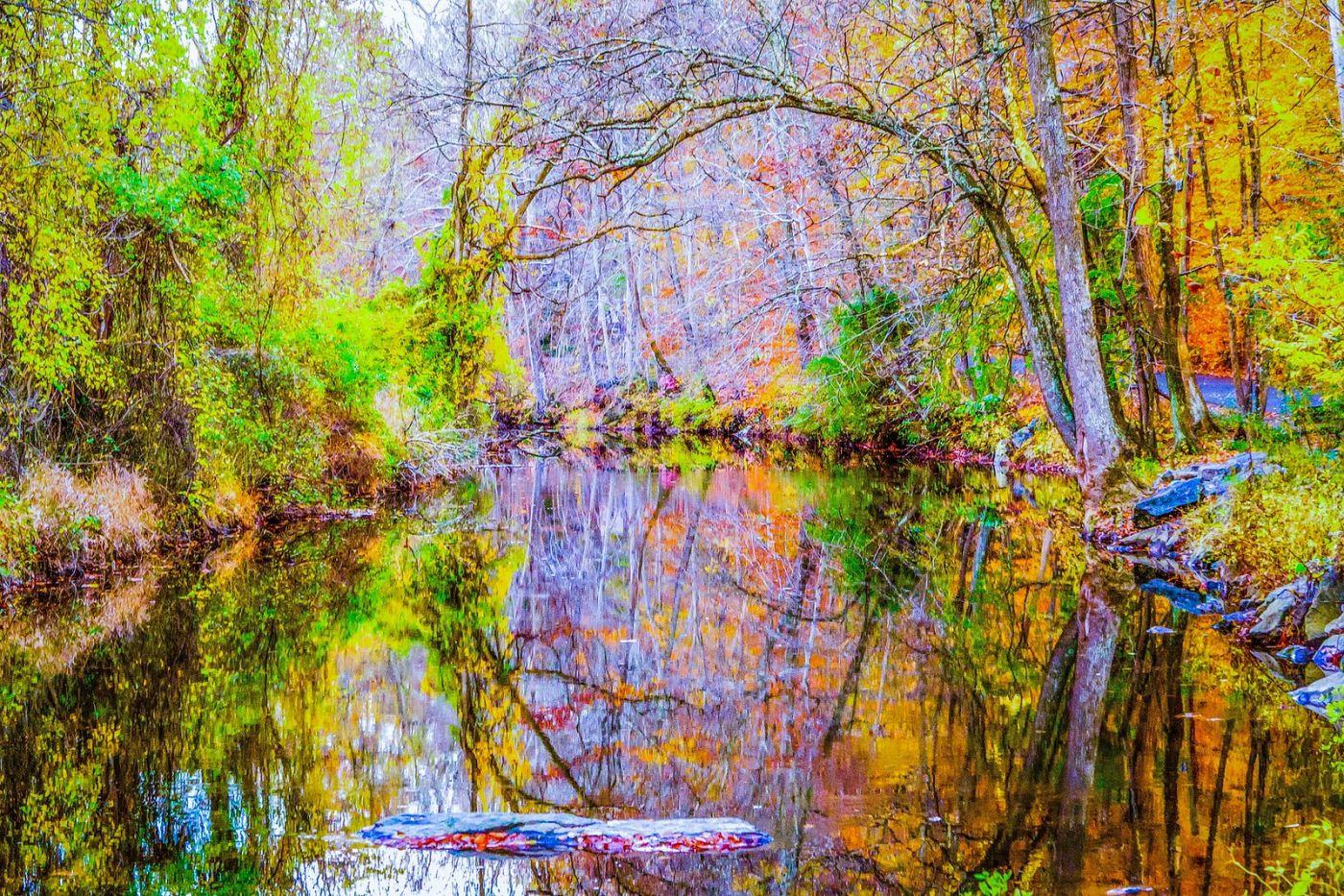 宾州雷德利克里克公园(Ridley creek park),如梦的画面_图1-10