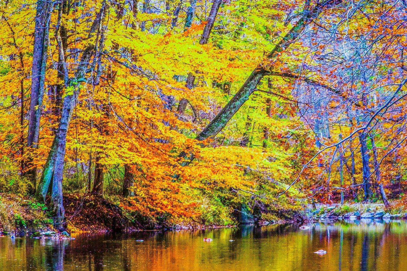 宾州雷德利克里克公园(Ridley creek park),如梦的画面_图1-11