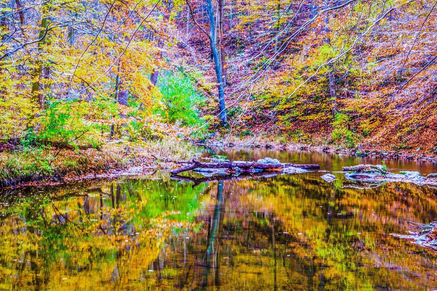 宾州雷德利克里克公园(Ridley creek park),如梦的画面_图1-12