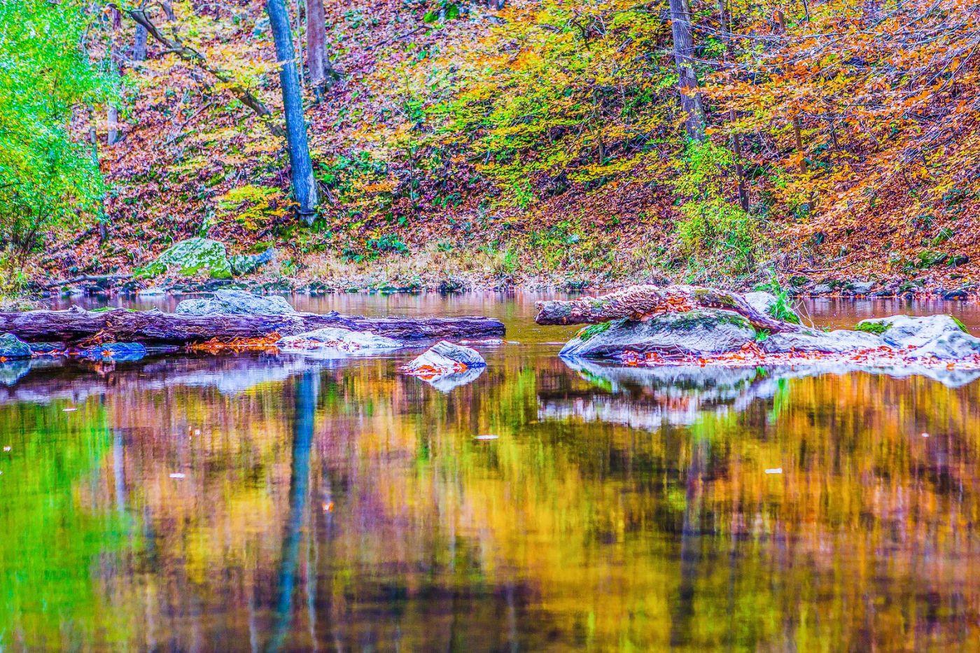 宾州雷德利克里克公园(Ridley creek park),如梦的画面_图1-5
