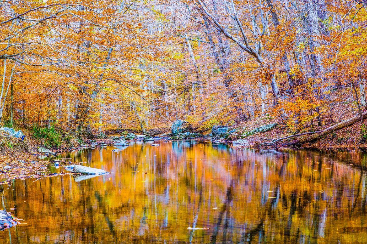 宾州雷德利克里克公园(Ridley creek park),如梦的画面_图1-6