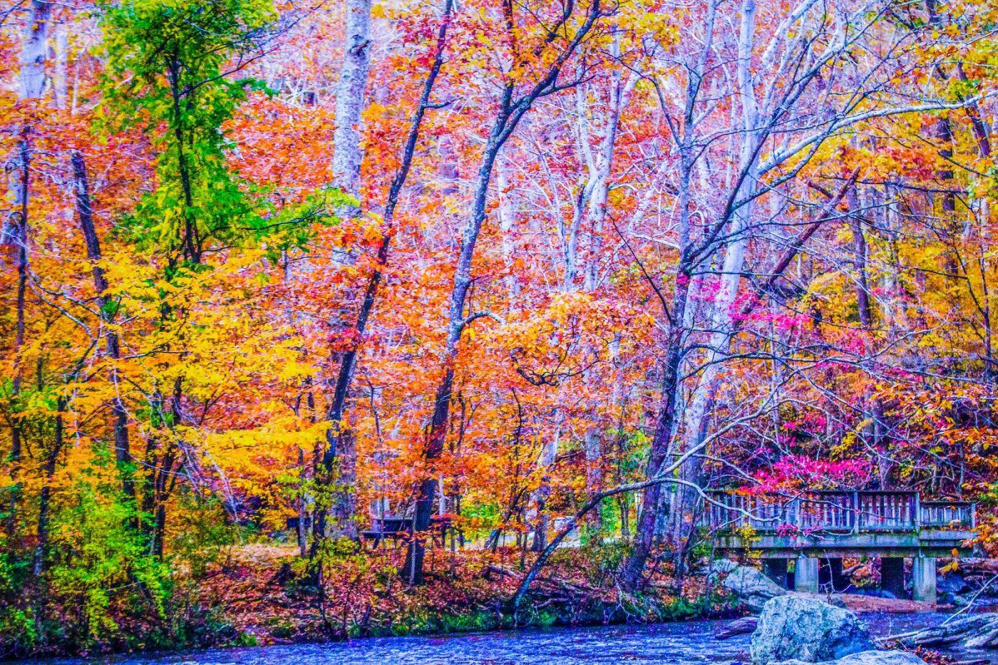 宾州雷德利克里克公园(Ridley creek park),如梦的画面_图1-7