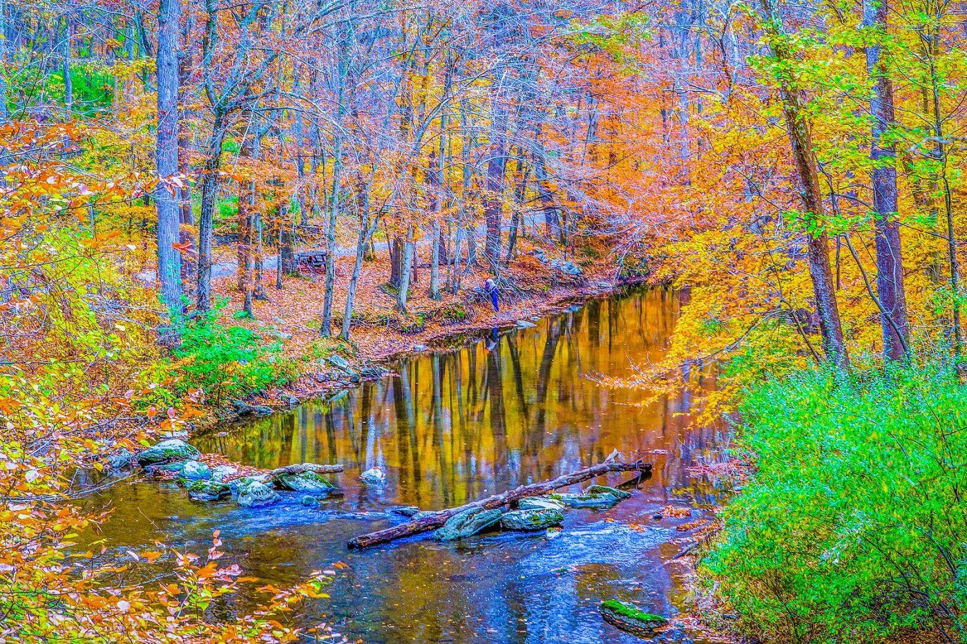 宾州雷德利克里克公园(Ridley creek park),如梦的画面_图1-8