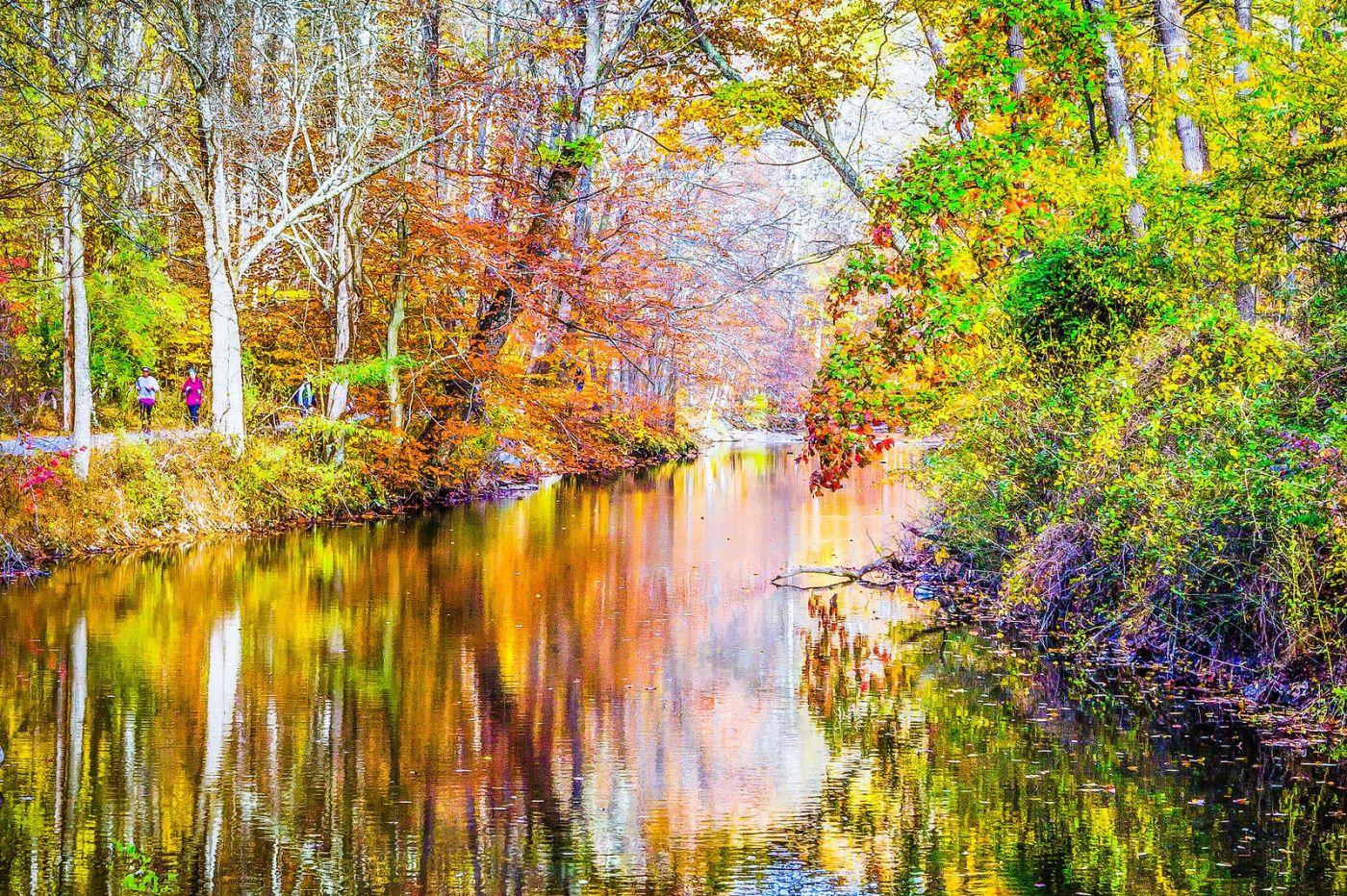 宾州雷德利克里克公园(Ridley creek park),如梦的画面_图1-4