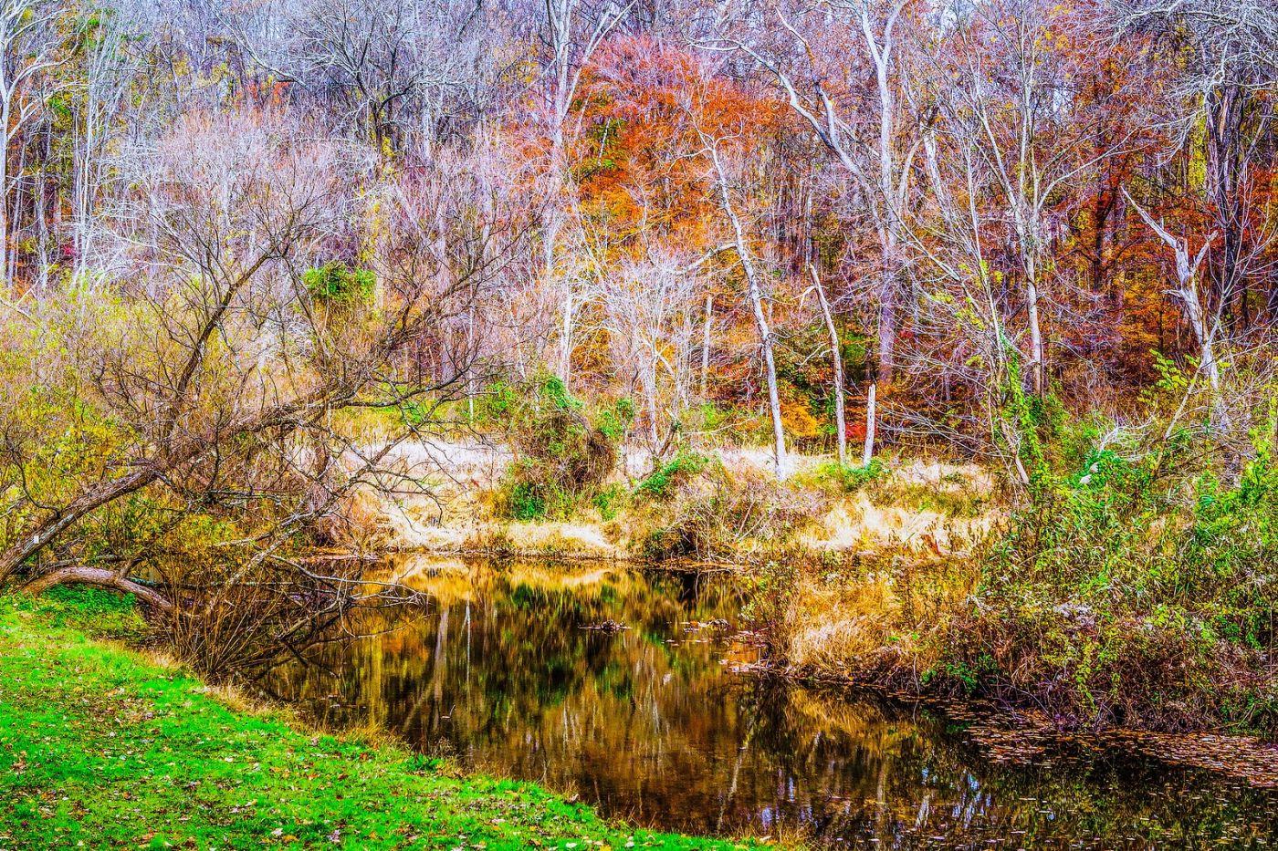 宾州雷德利克里克公园(Ridley creek park),如梦的画面_图1-14