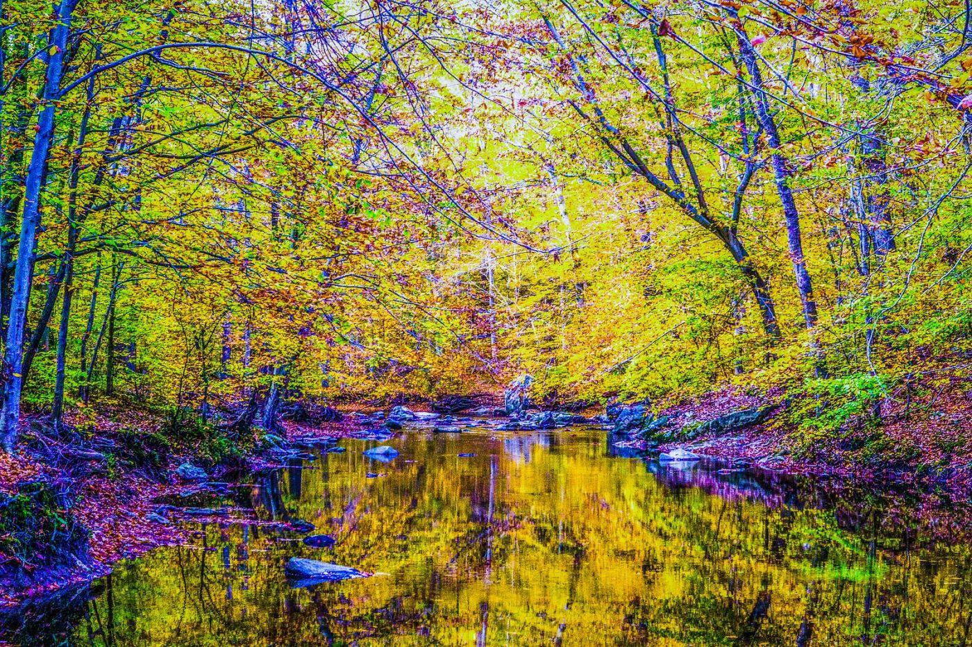 宾州雷德利克里克公园(Ridley creek park),如梦的画面_图1-16