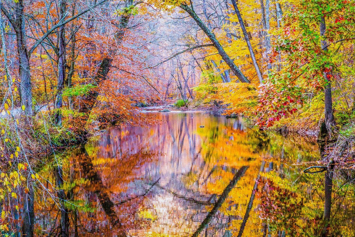 宾州雷德利克里克公园(Ridley creek park),如梦的画面_图1-20