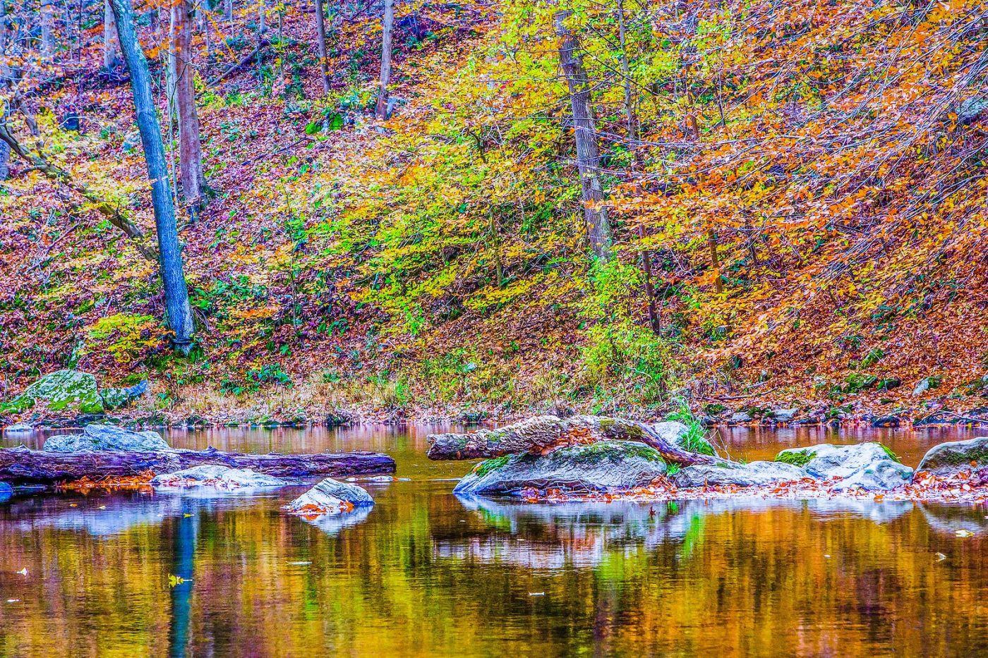 宾州雷德利克里克公园(Ridley creek park),如梦的画面_图1-19