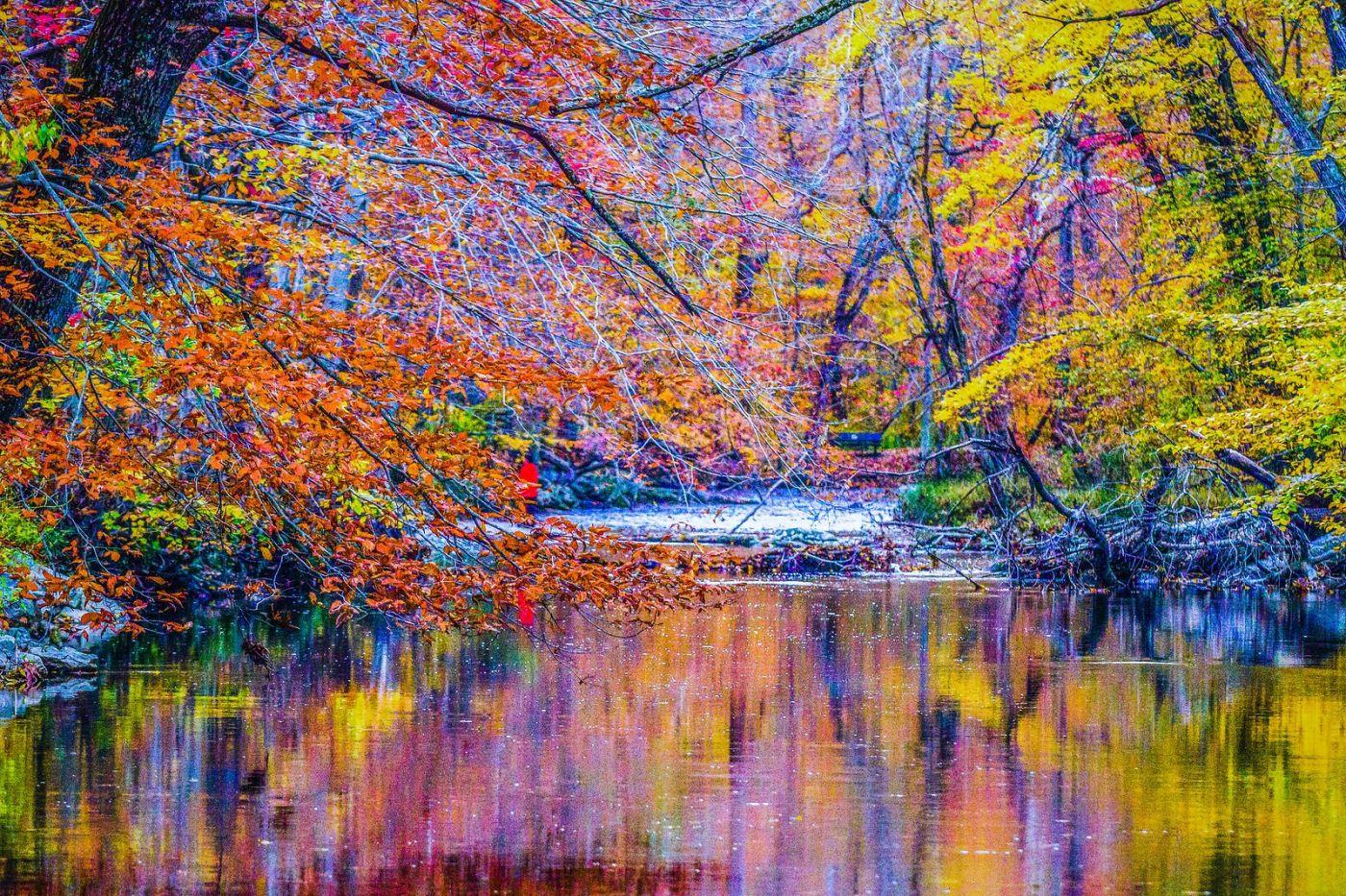 宾州雷德利克里克公园(Ridley creek park),如梦的画面_图1-18