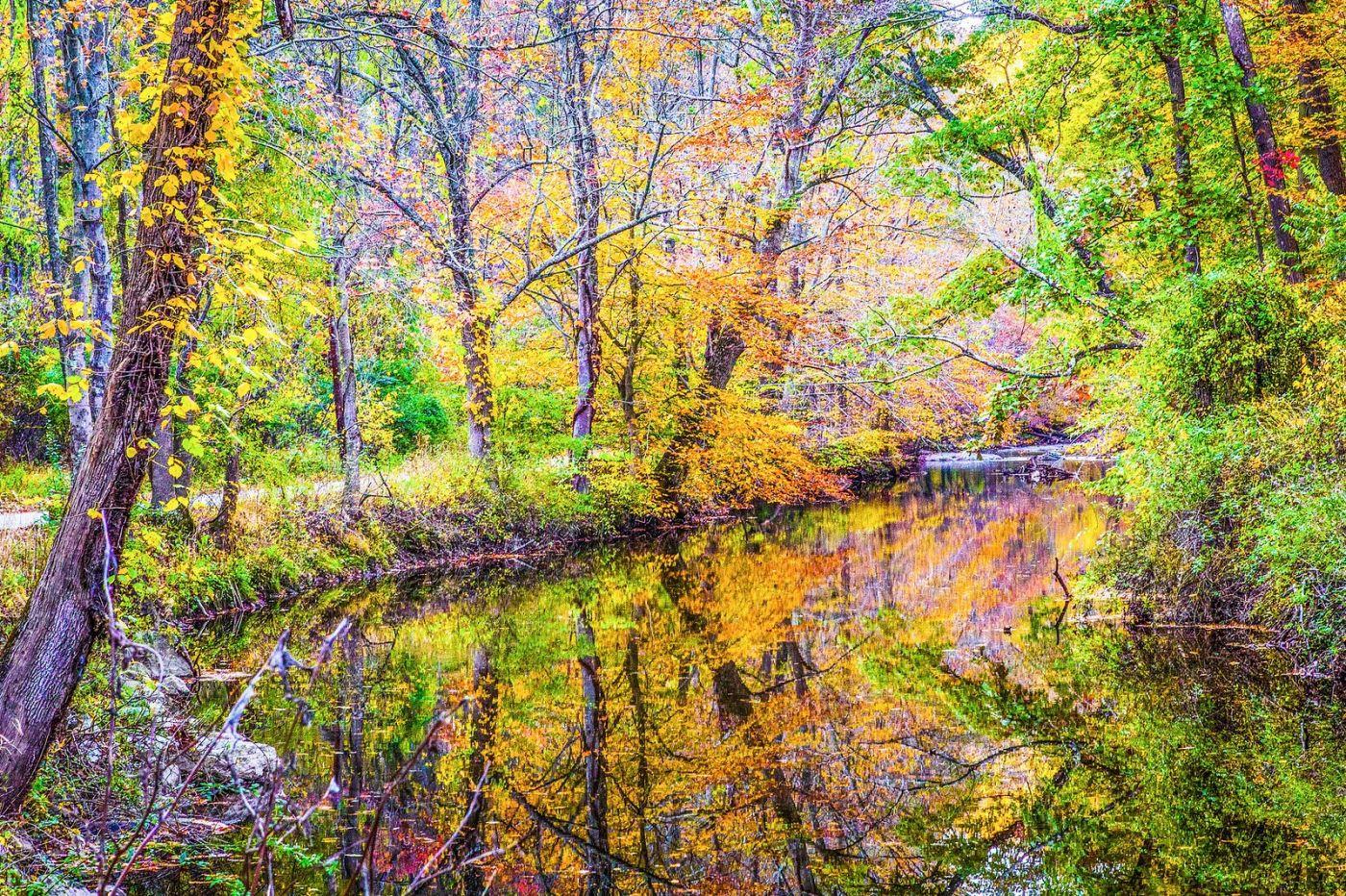 宾州雷德利克里克公园(Ridley creek park),如梦的画面_图1-17