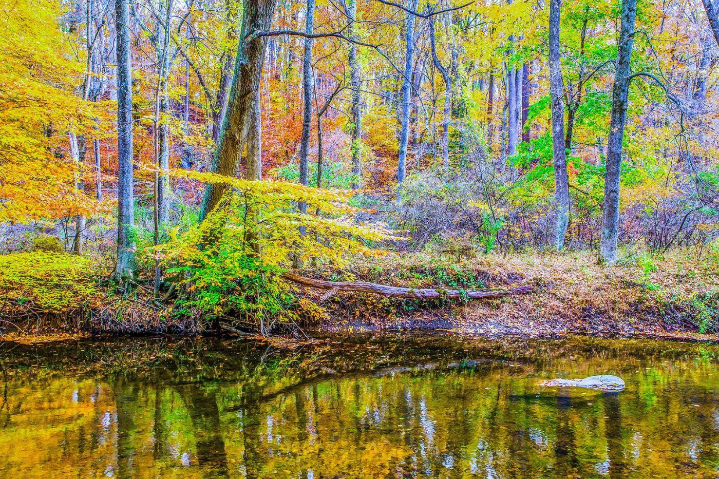 宾州雷德利克里克公园(Ridley creek park),如梦的画面_图1-21