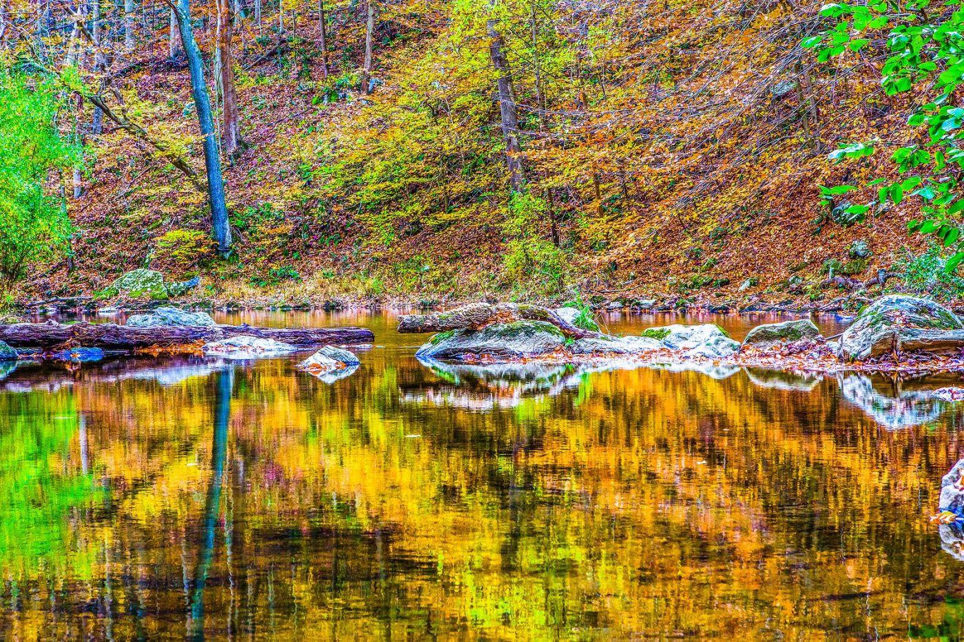 宾州雷德利克里克公园(Ridley creek park),如梦的画面_图1-22
