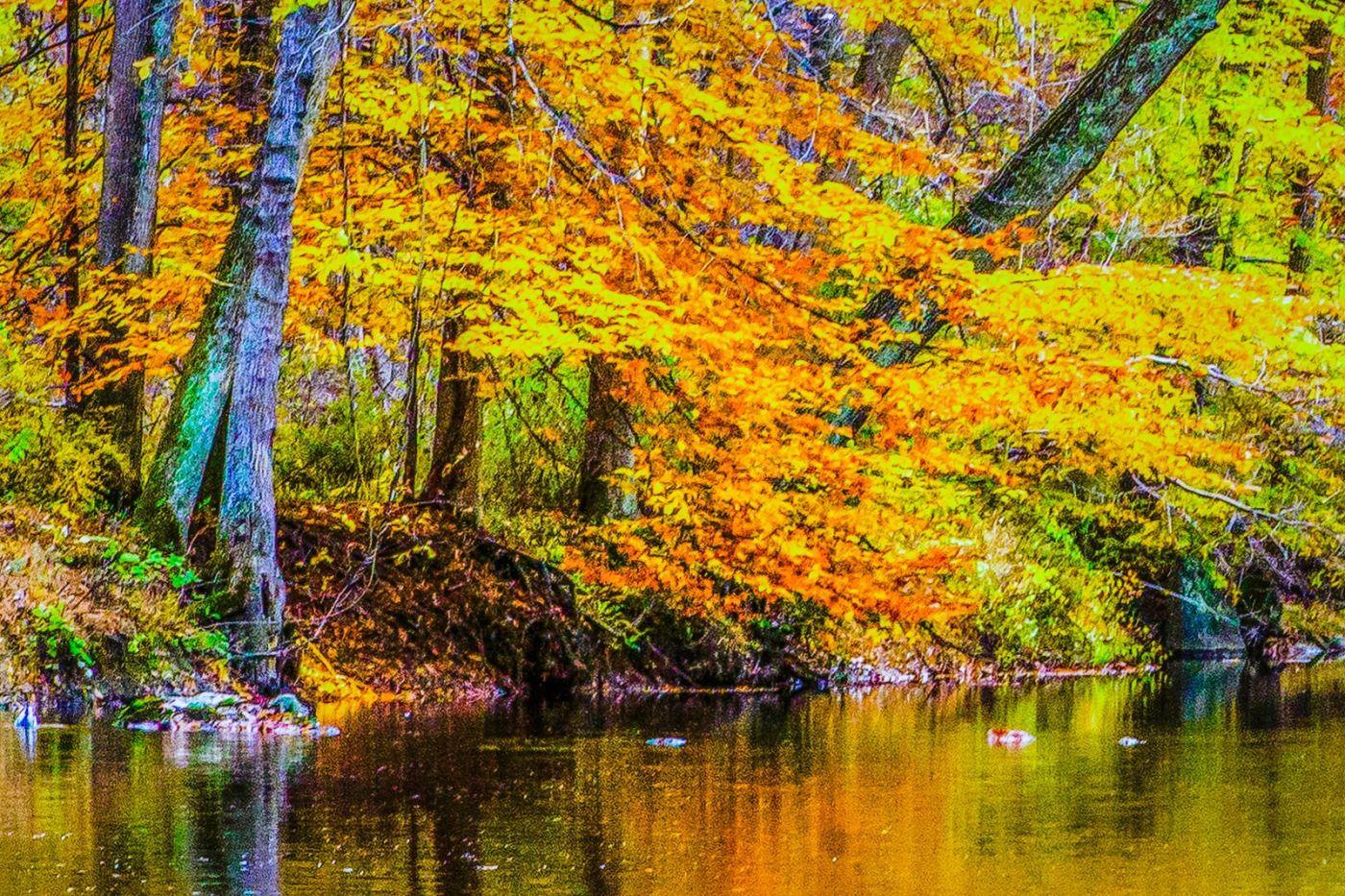 宾州雷德利克里克公园(Ridley creek park),如梦的画面_图1-23