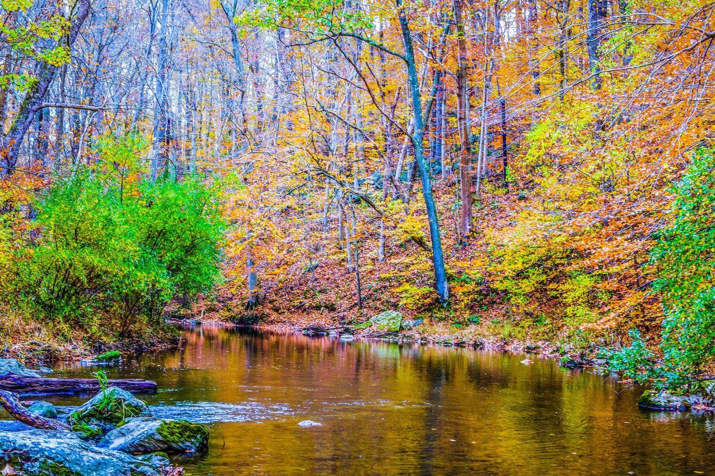宾州雷德利克里克公园(Ridley creek park),如梦的画面_图1-27