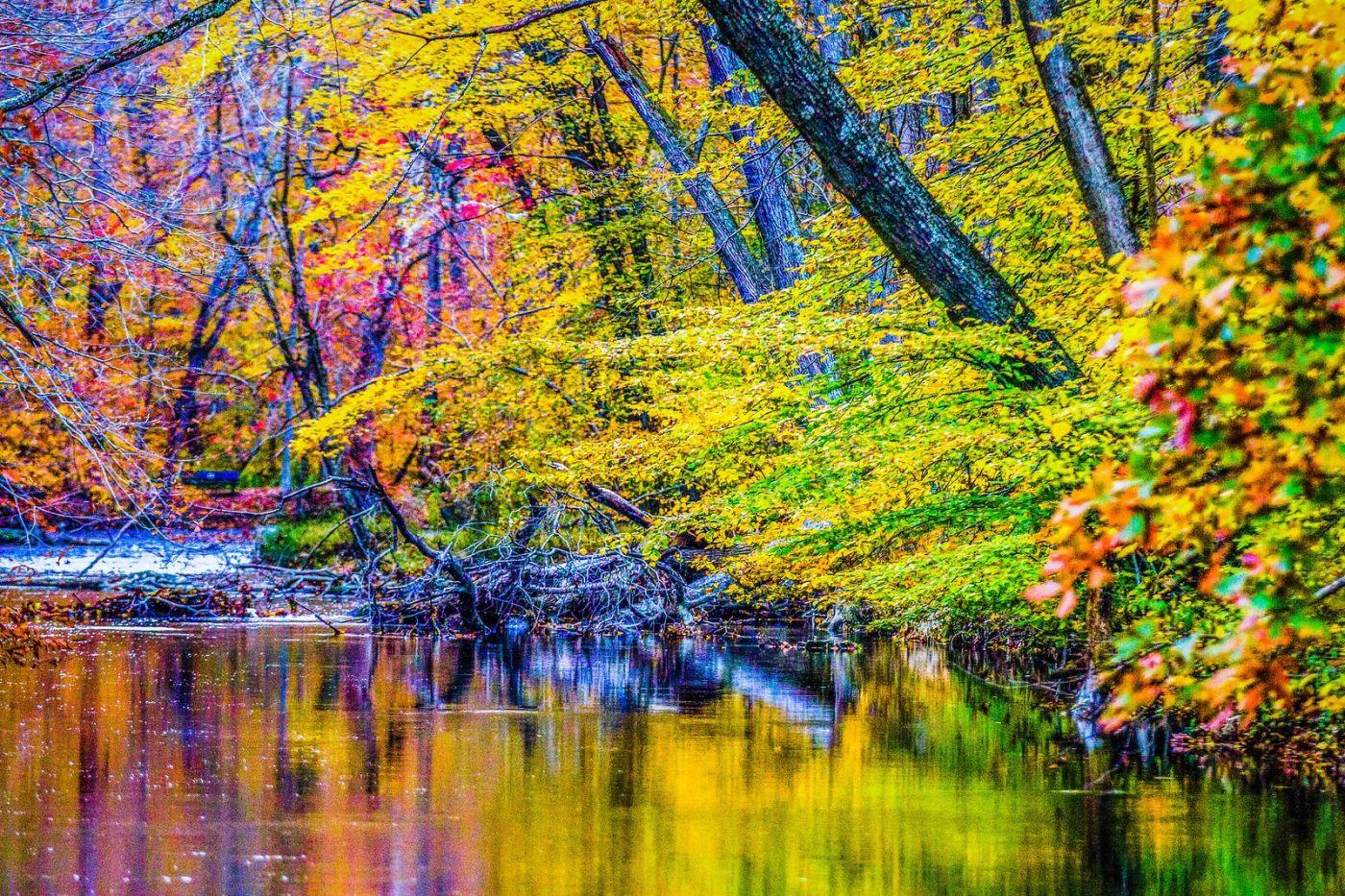 宾州雷德利克里克公园(Ridley creek park),如梦的画面_图1-26