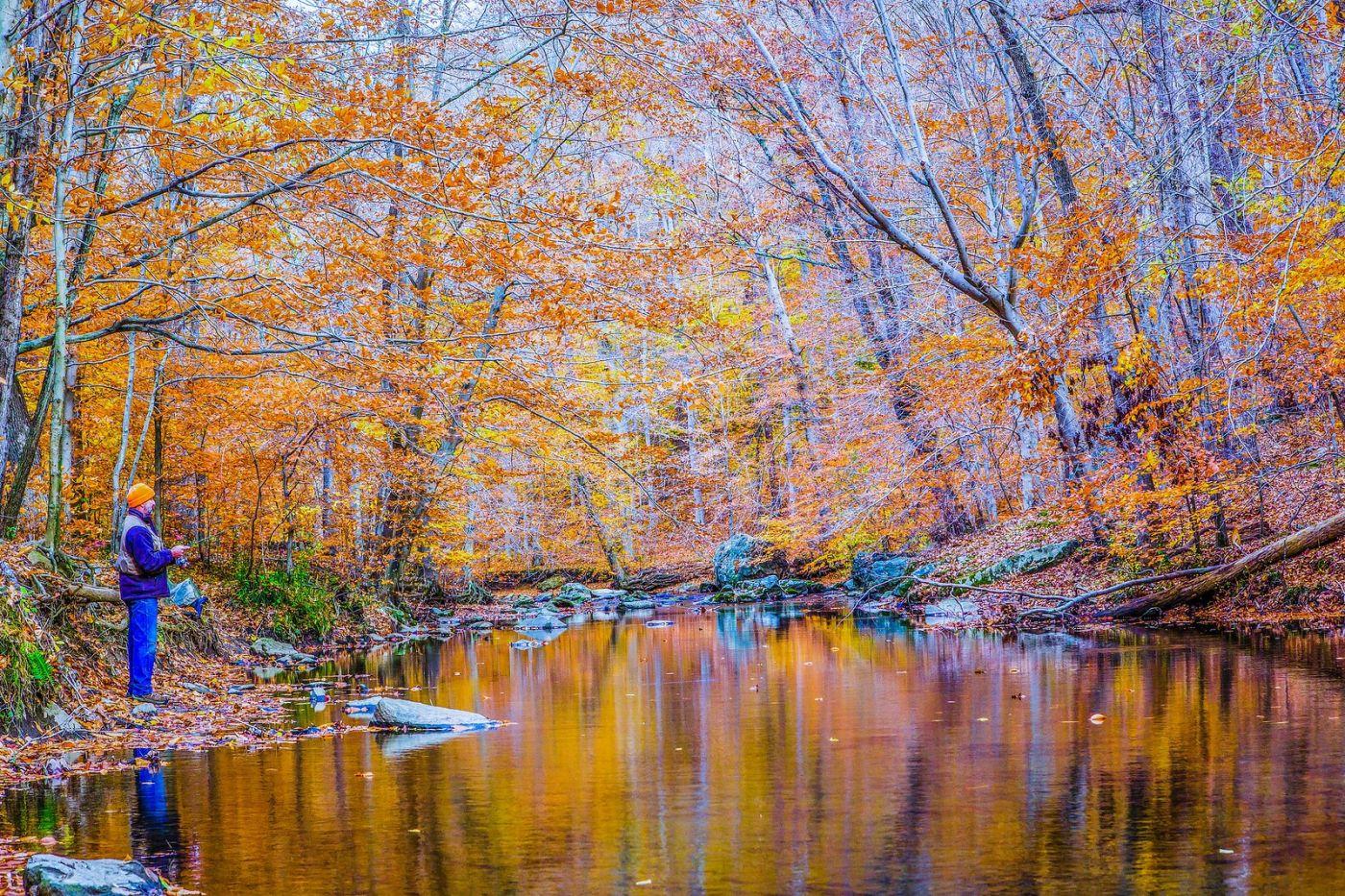 宾州雷德利克里克公园(Ridley creek park),如梦的画面_图1-25