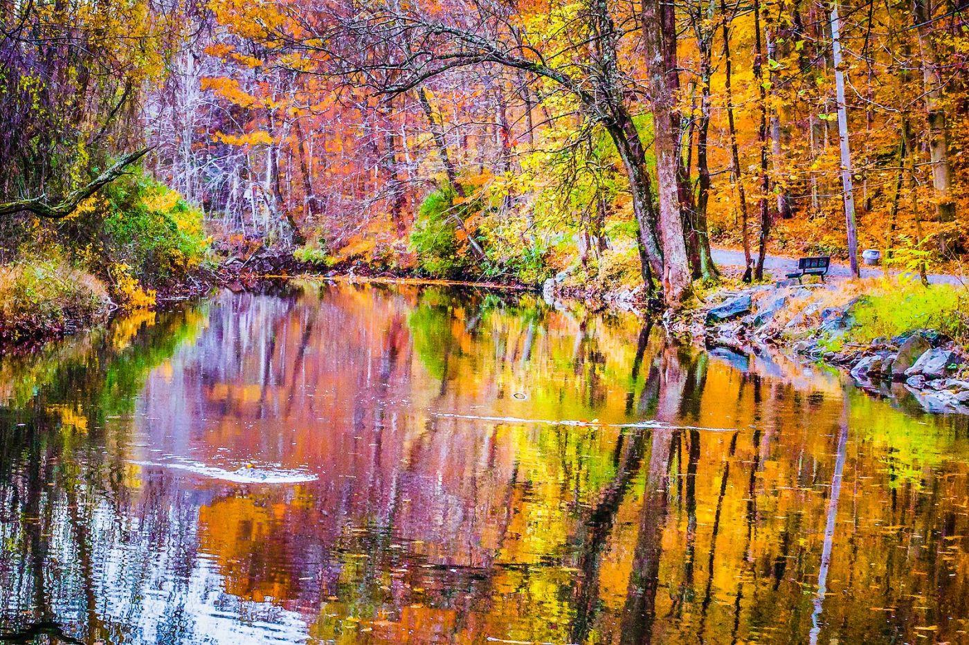 宾州雷德利克里克公园(Ridley creek park),如梦的画面_图1-29