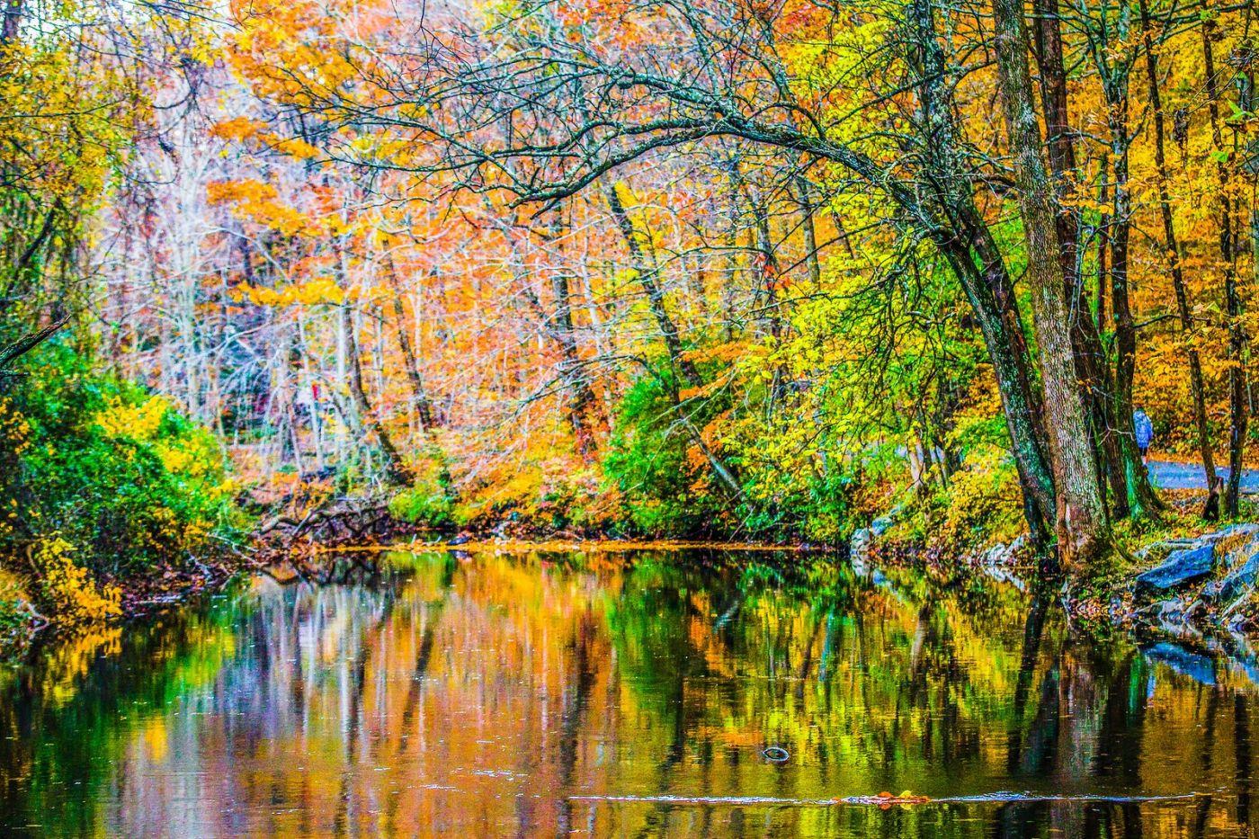 宾州雷德利克里克公园(Ridley creek park),如梦的画面_图1-30