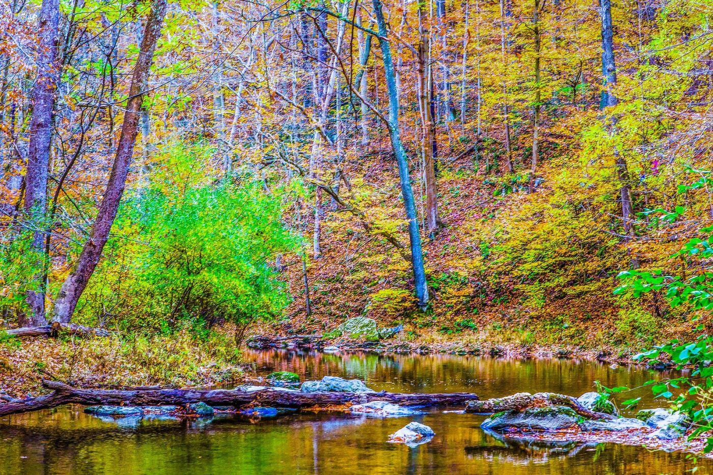 宾州雷德利克里克公园(Ridley creek park),如梦的画面_图1-31