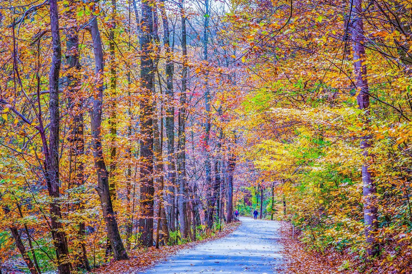 宾州雷德利克里克公园(Ridley creek park),如梦的画面_图1-32